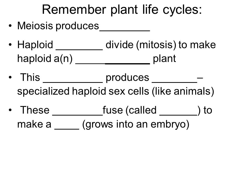 Remember plant life cycles: