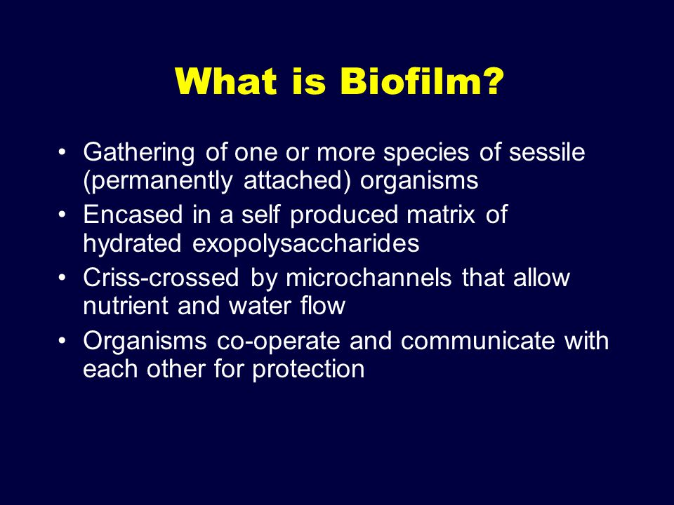 What is Biofilm Gathering of one or more species of sessile (permanently attached) organisms.