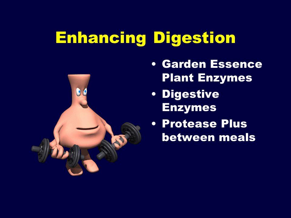 Enhancing Digestion Garden Essence Plant Enzymes Digestive Enzymes