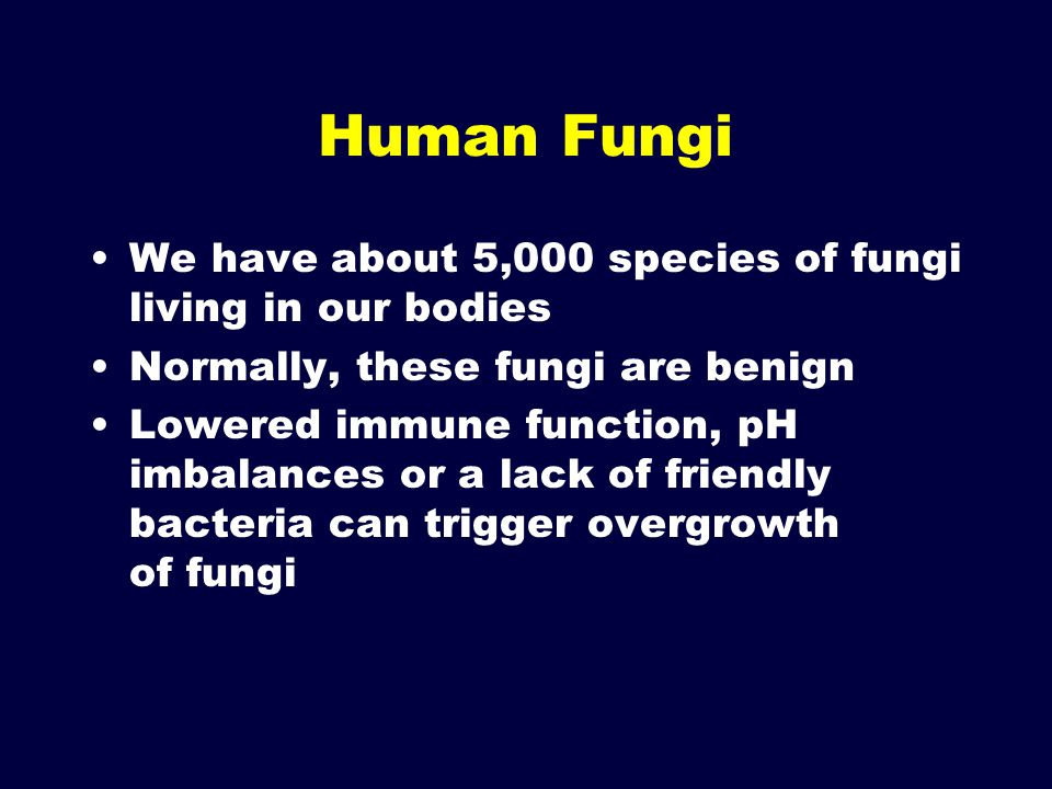 Human Fungi We have about 5,000 species of fungi living in our bodies