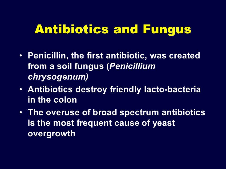 Antibiotics and Fungus