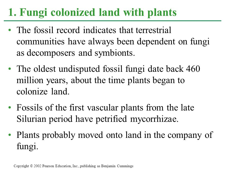 1. Fungi colonized land with plants