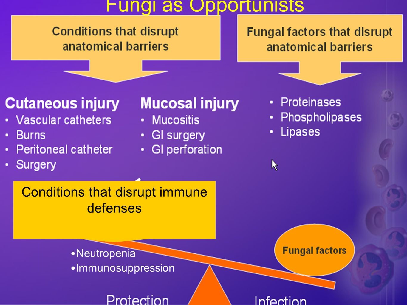 Conditions that disrupt immune defenses