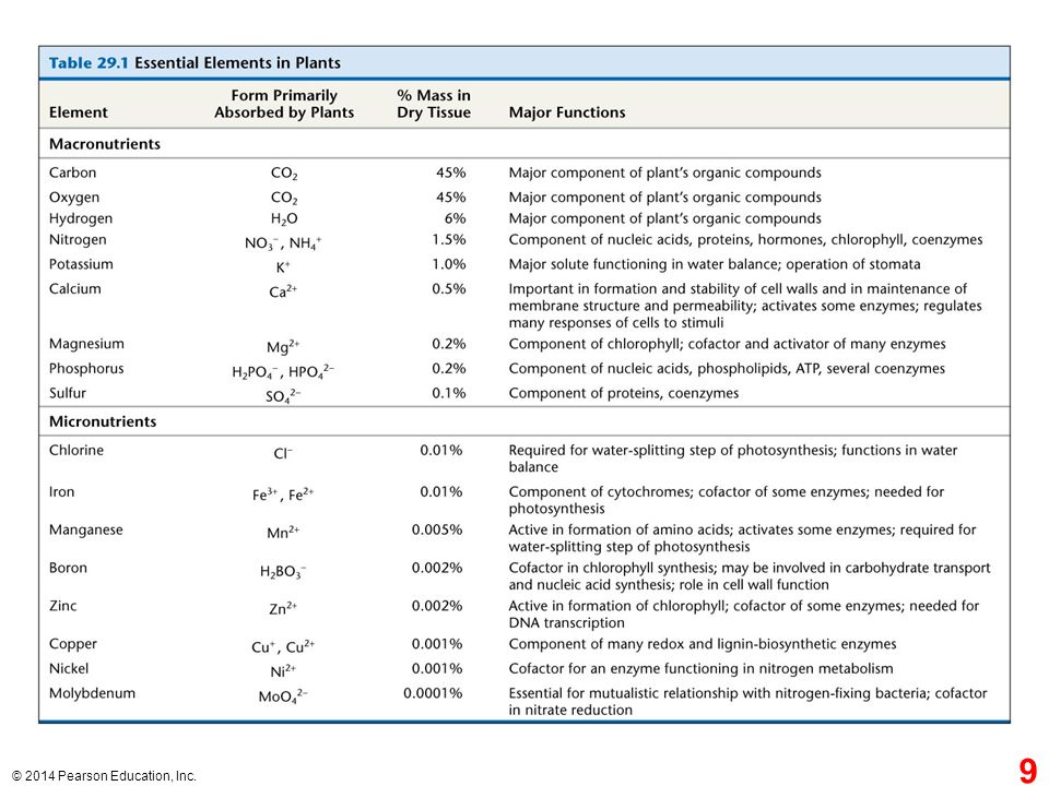 Table 29.1 Essential elements in plants