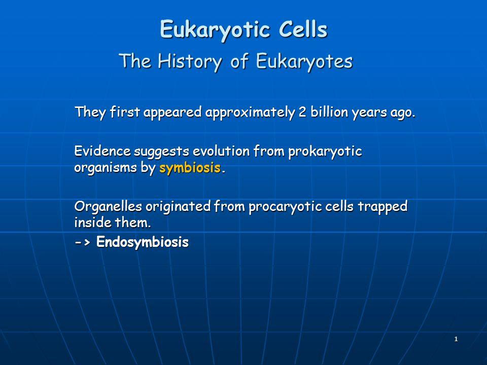 The History of Eukaryotes