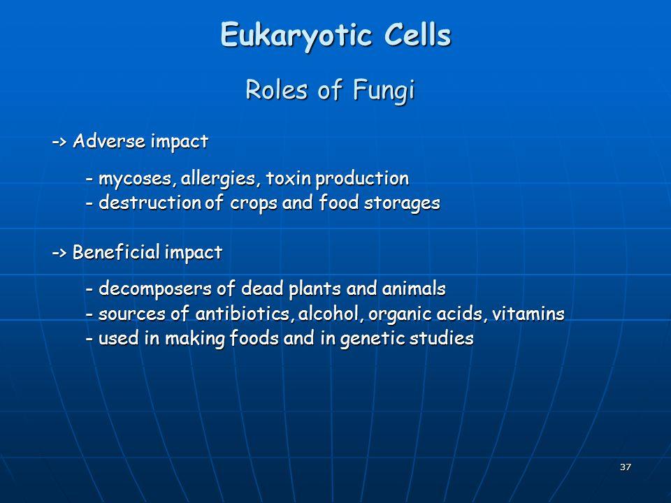 Eukaryotic Cells Roles of Fungi -> Adverse impact