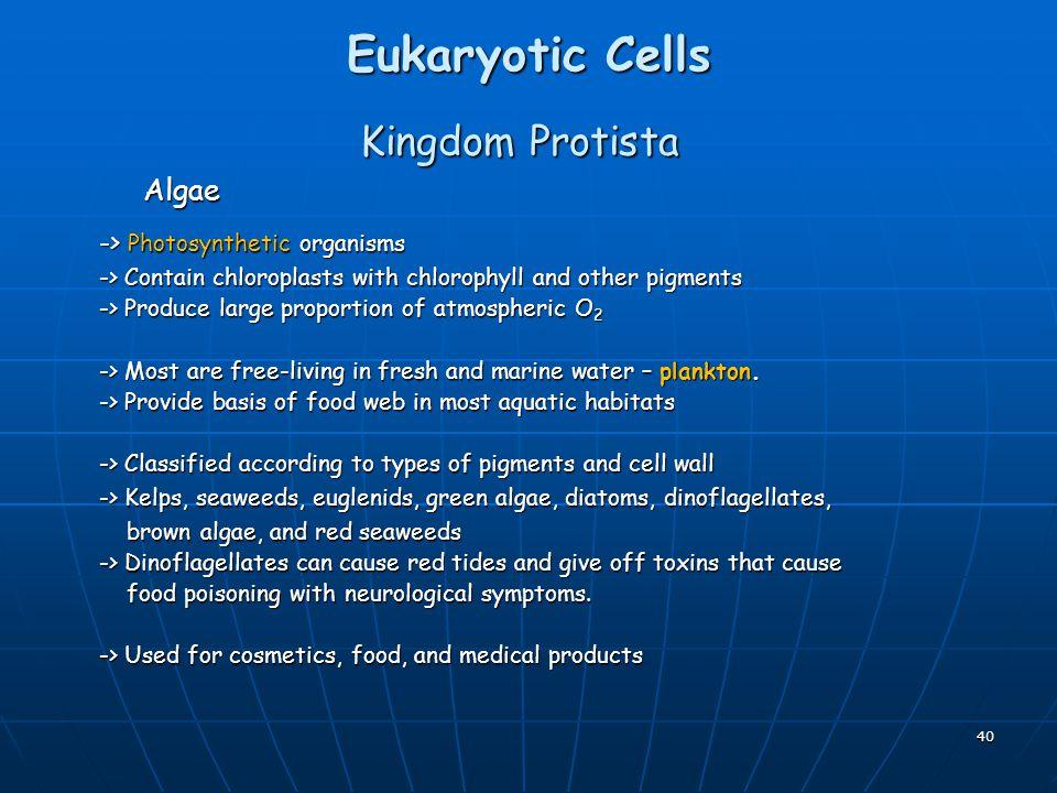 Eukaryotic Cells Kingdom Protista Algae -> Photosynthetic organisms