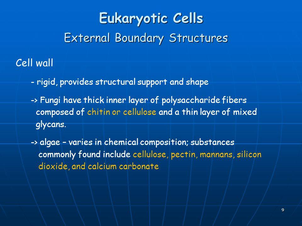 External Boundary Structures