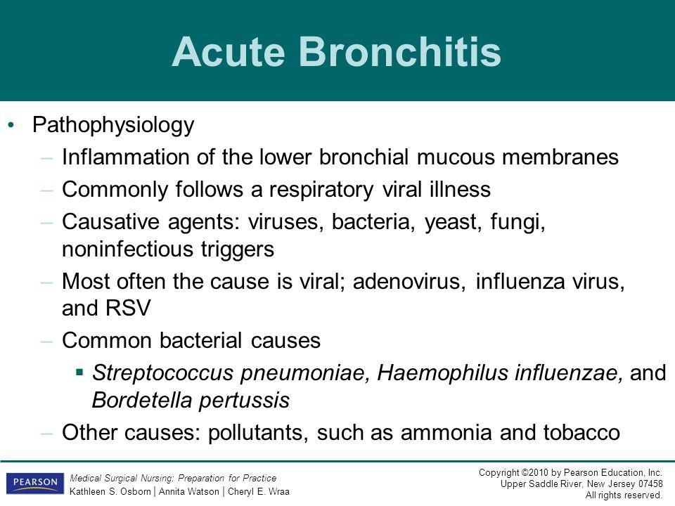 Acute Bronchitis Pathophysiology