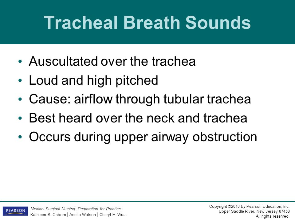 Tracheal Breath Sounds