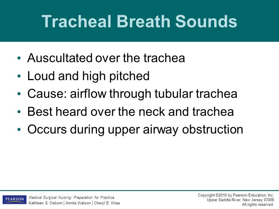 Tracheal Breath Sounds