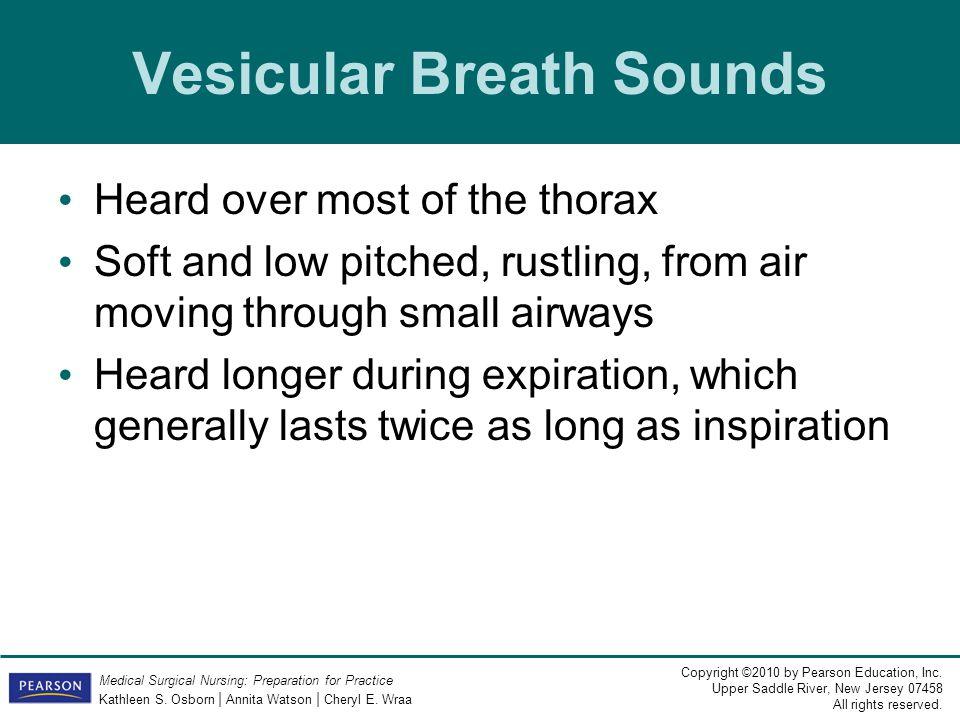 Vesicular Breath Sounds