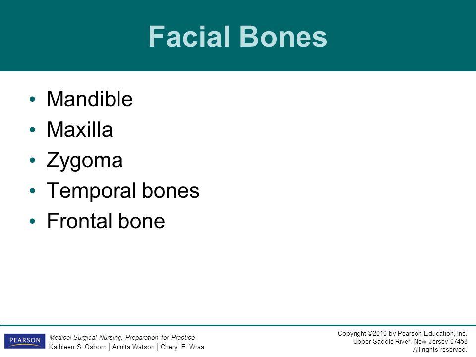 Facial Bones Mandible Maxilla Zygoma Temporal bones Frontal bone