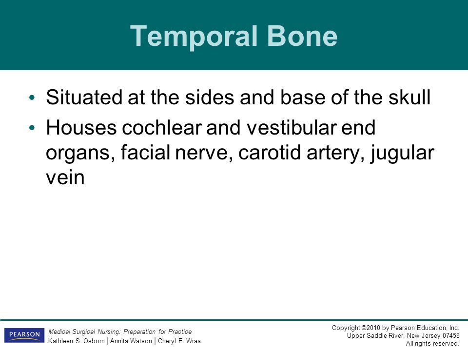 Temporal Bone Situated at the sides and base of the skull