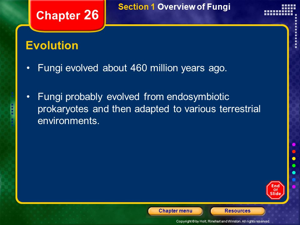 Chapter 26 Evolution Fungi evolved about 460 million years ago.