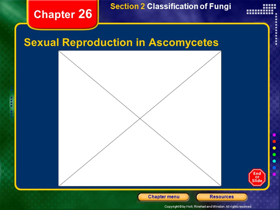 Sexual Reproduction in Ascomycetes