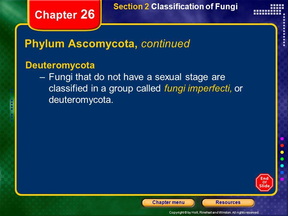 Phylum Ascomycota, continued