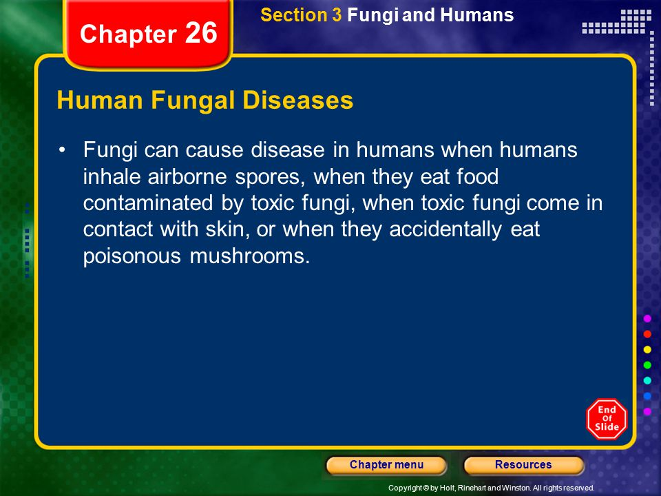 Chapter 26 Human Fungal Diseases
