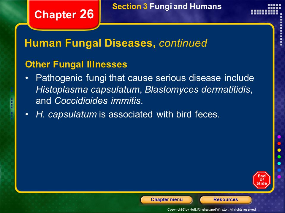 Human Fungal Diseases, continued