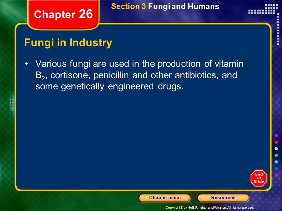 Chapter 26 Fungi in Industry