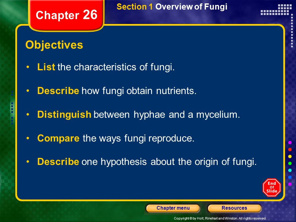 Chapter 26 Objectives List the characteristics of fungi.