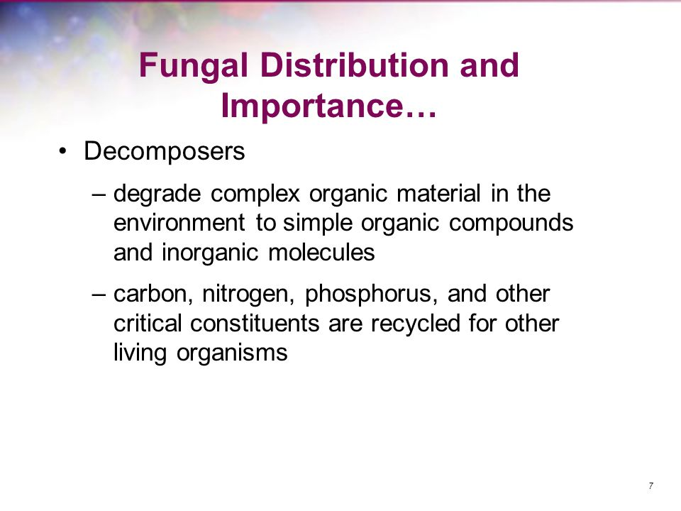 Fungal Distribution and Importance…