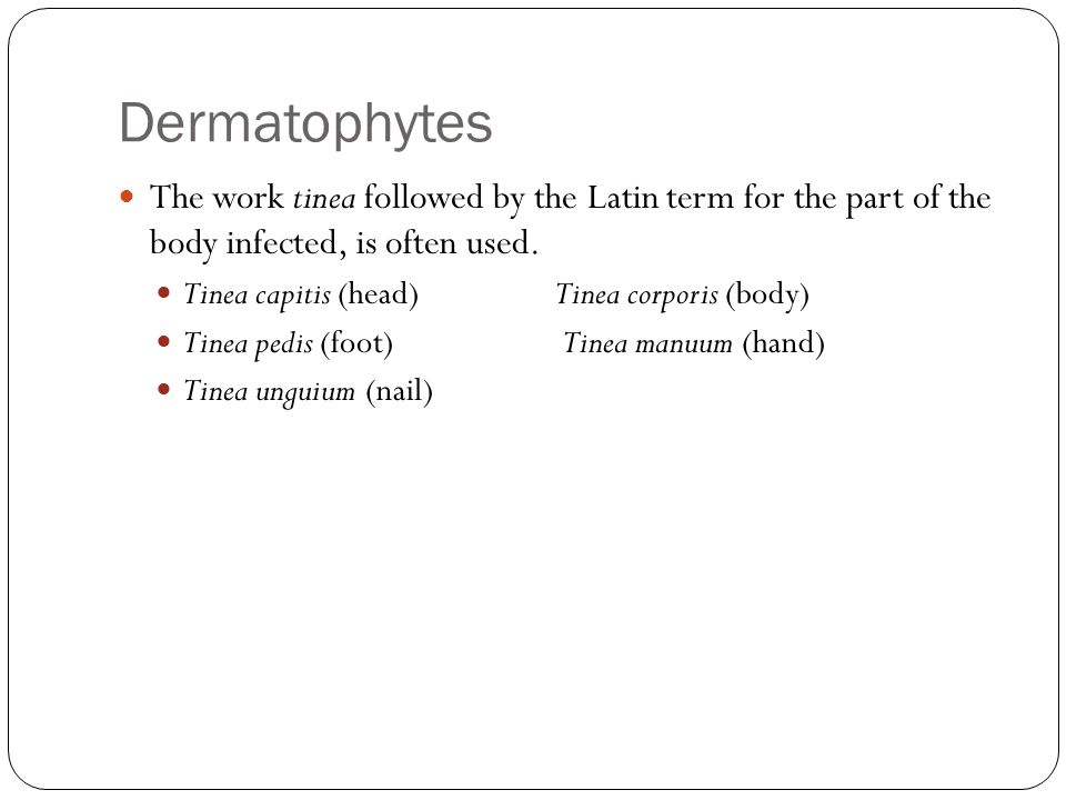 Dermatophytes The work tinea followed by the Latin term for the part of the body infected, is often used.