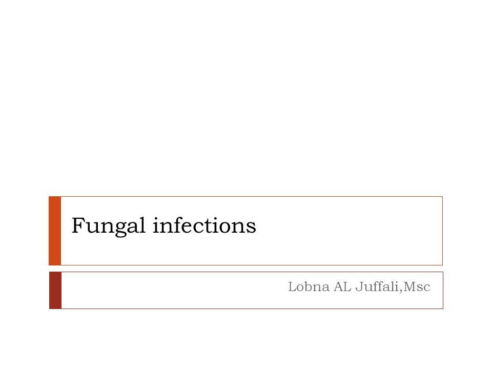 Fungal infections Lobna AL Juffali,Msc