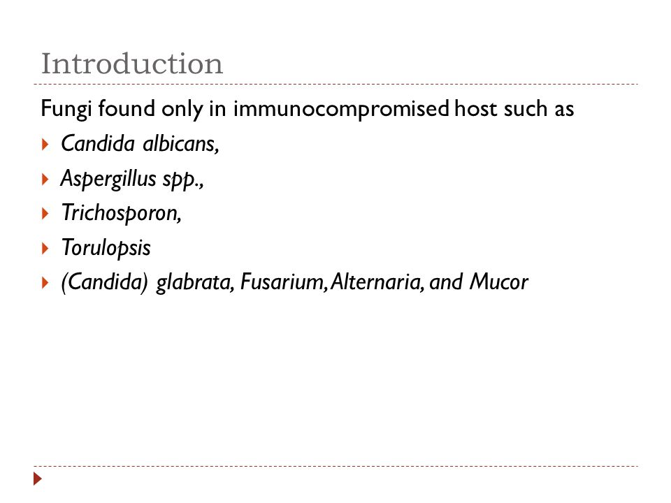 Introduction Fungi found only in immunocompromised host such as