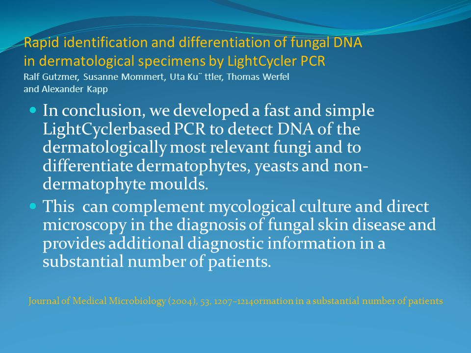 Rapid identification and differentiation of fungal DNA in dermatological specimens by LightCycler PCR Ralf Gutzmer, Susanne Mommert, Uta Ku¨ ttler, Thomas Werfel and Alexander Kapp