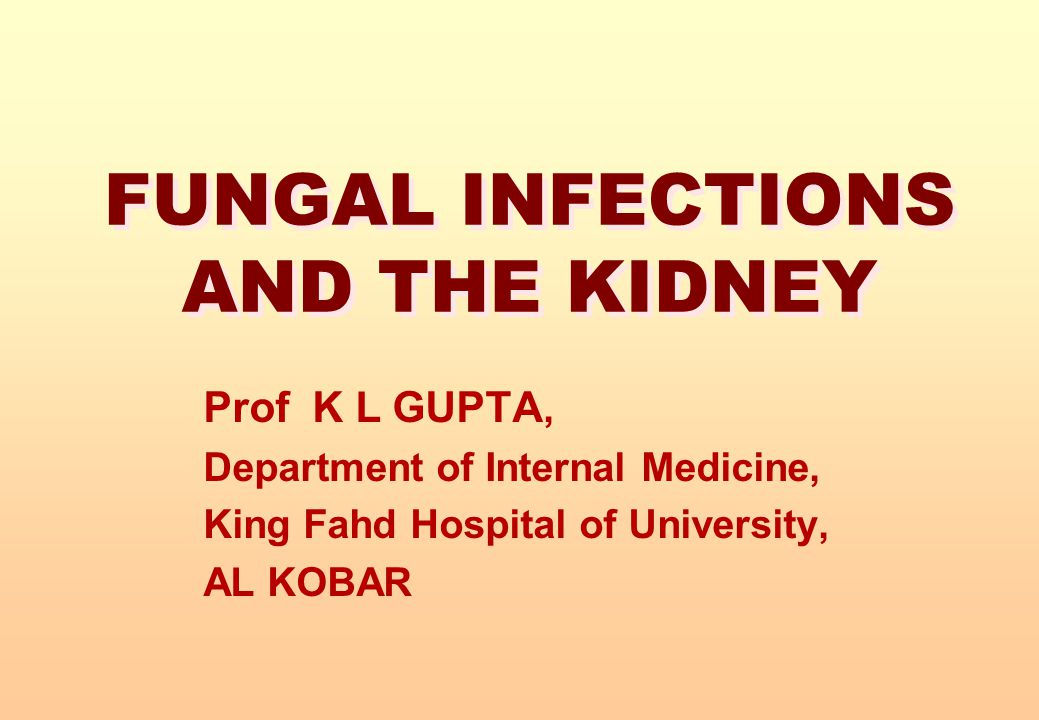 FUNGAL INFECTIONS AND THE KIDNEY
