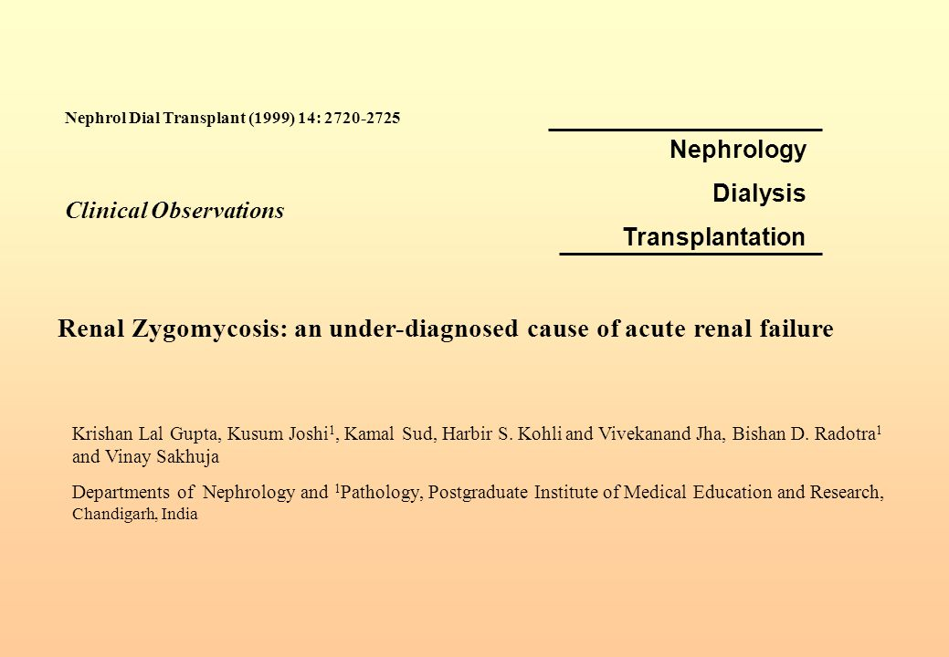 Renal Zygomycosis: an under-diagnosed cause of acute renal failure
