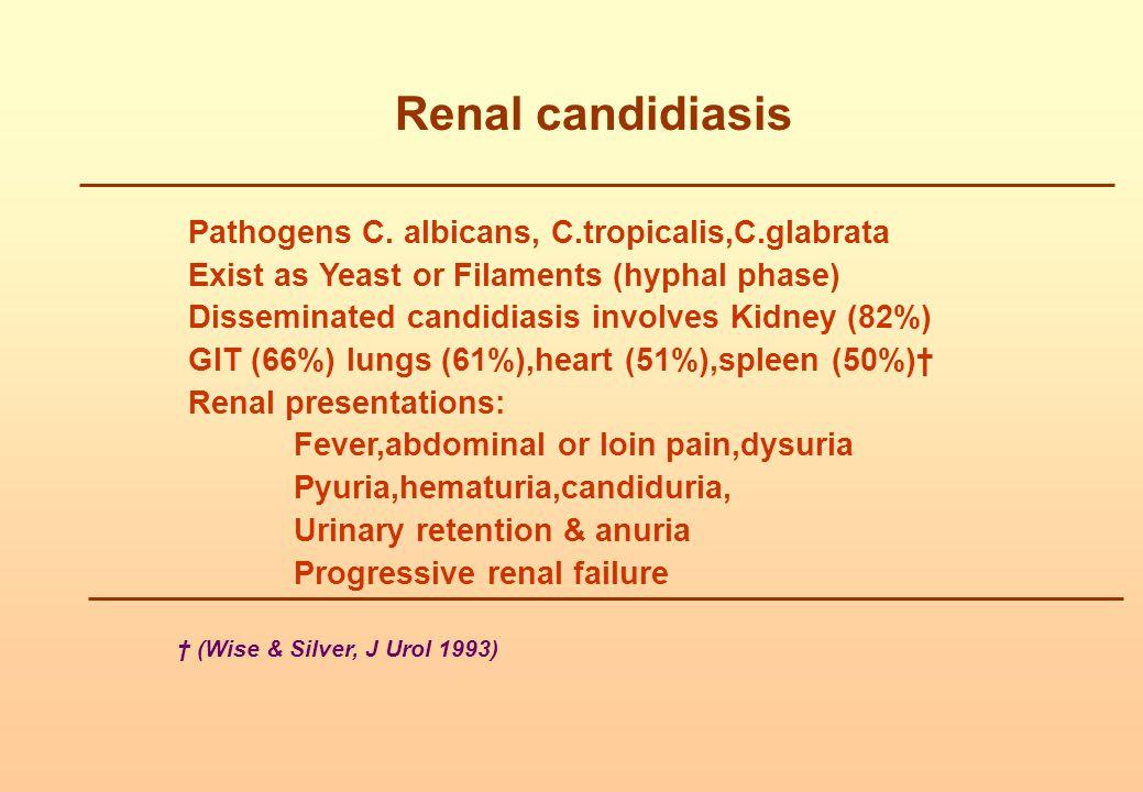 Renal candidiasis Pathogens C. albicans, C.tropicalis,C.glabrata