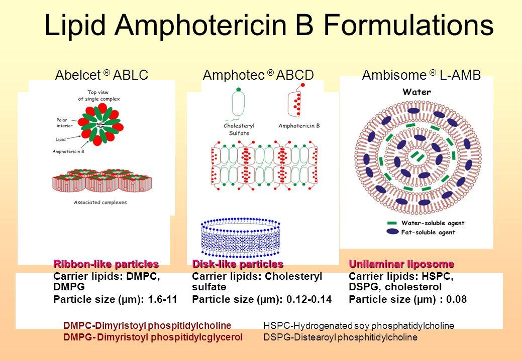 Lipid Amphotericin B Formulations