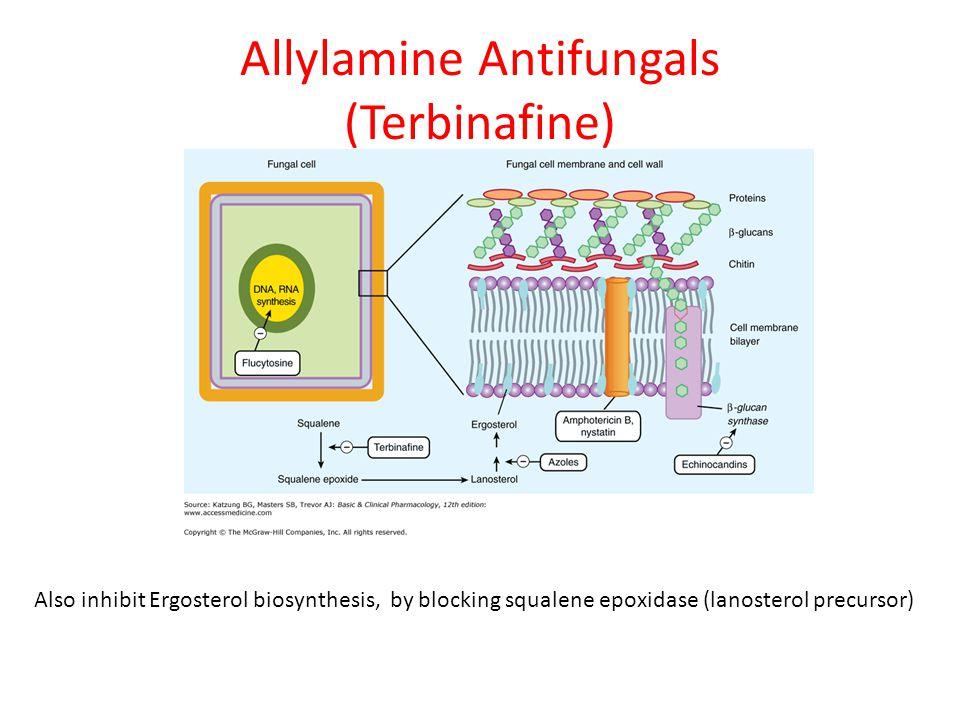 Allylamine Antifungals (Terbinafine)