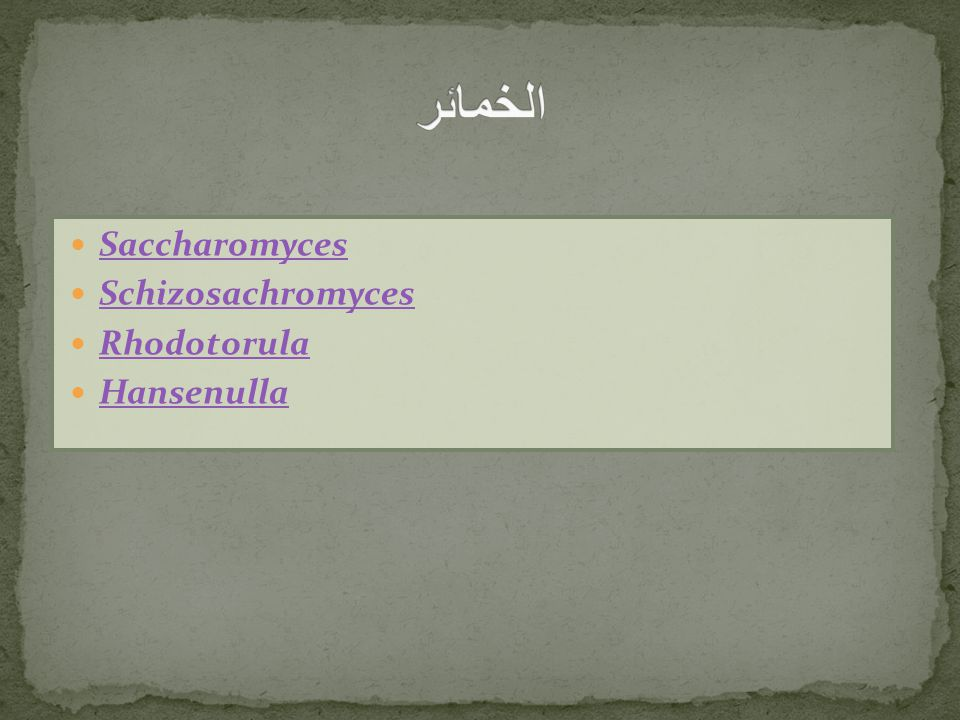 الخمائر Saccharomyces Schizosachromyces Rhodotorula Hansenulla