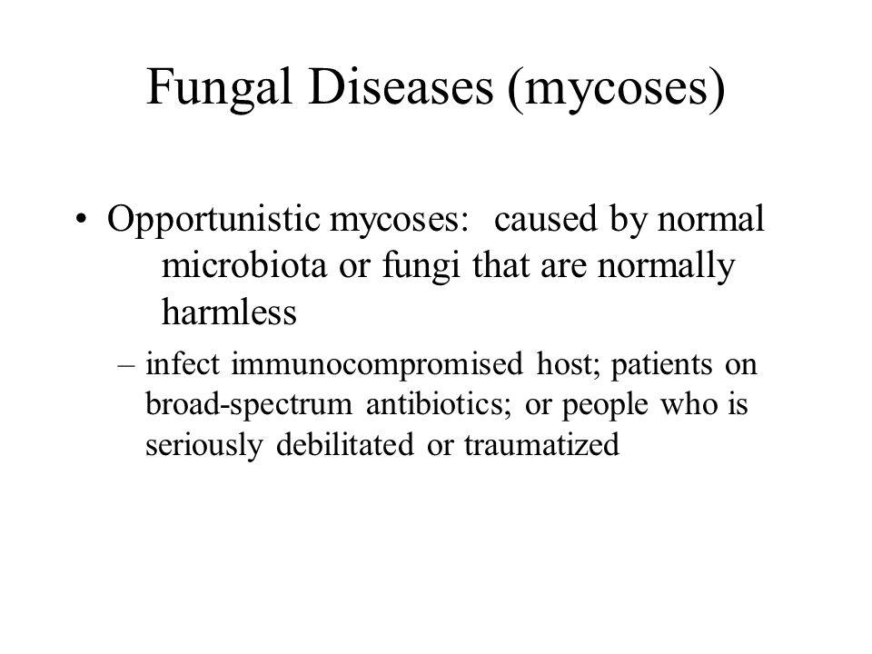 Fungal Diseases (mycoses)