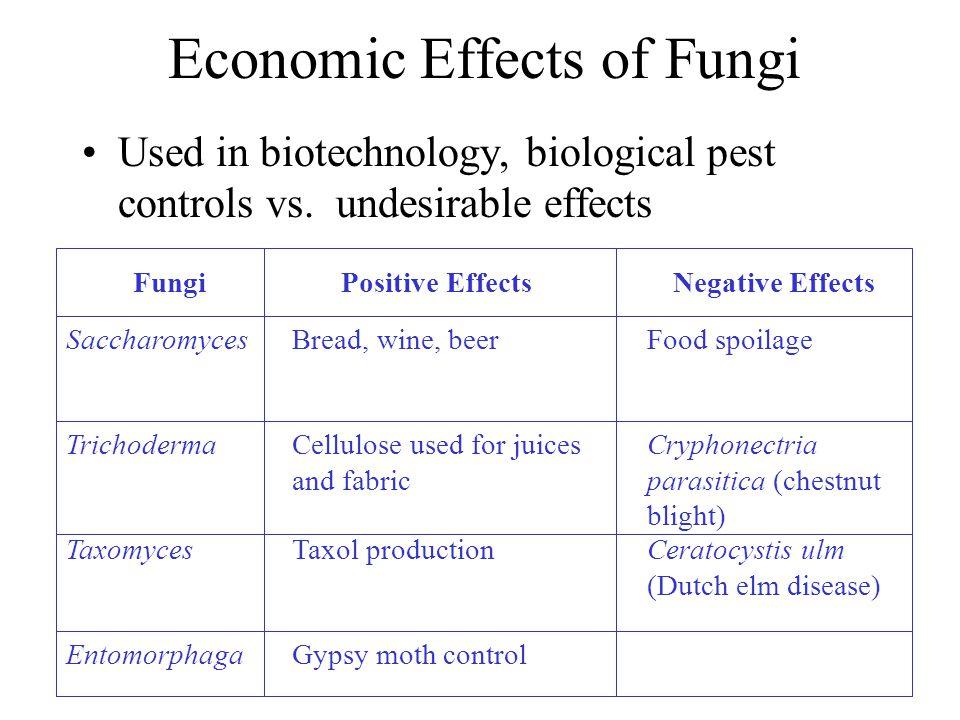 Economic Effects of Fungi