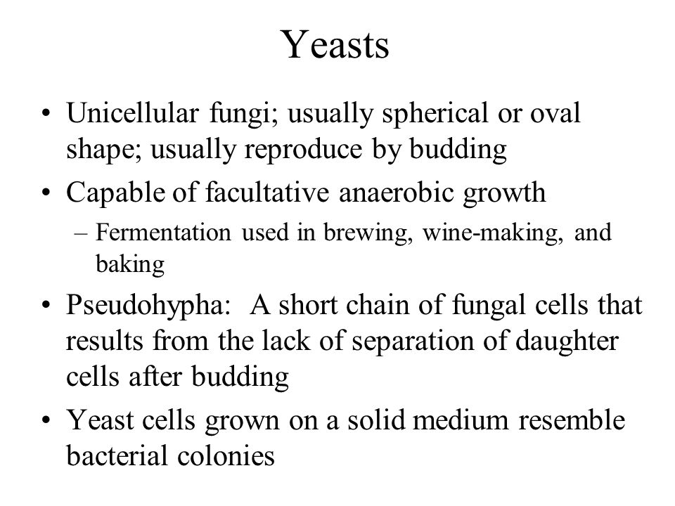 Yeasts Unicellular fungi; usually spherical or oval shape; usually reproduce by budding. Capable of facultative anaerobic growth.