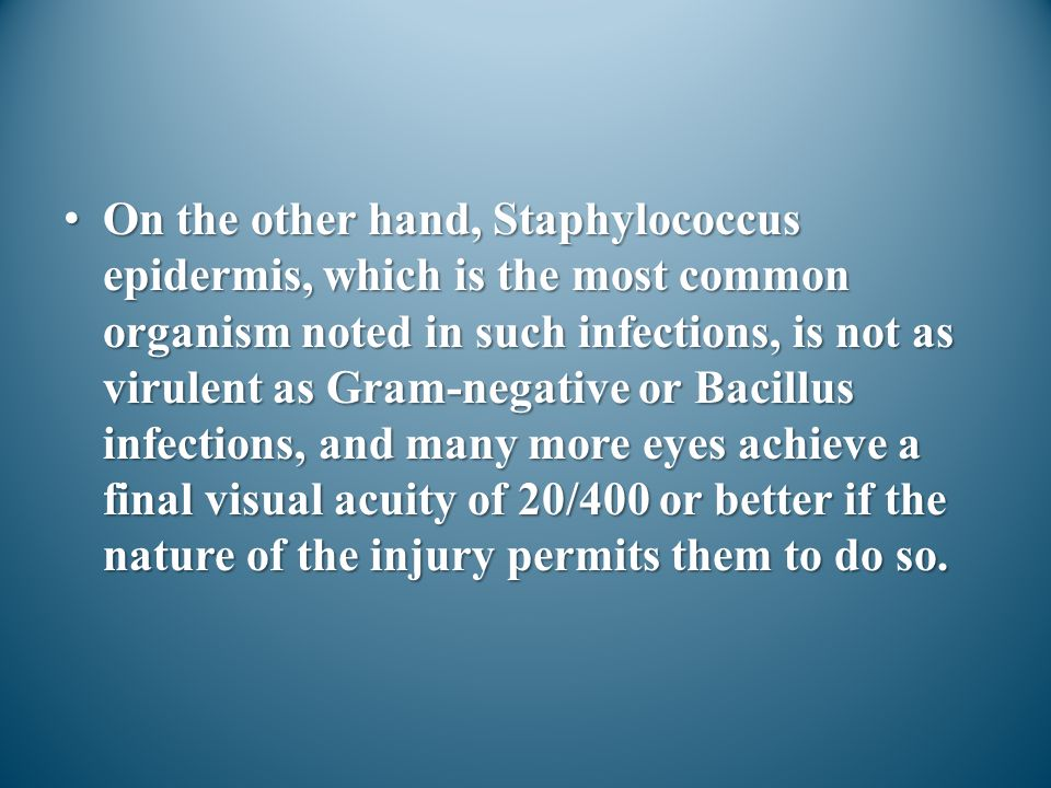 On the other hand, Staphylococcus epidermis, which is the most common organism noted in such infections, is not as virulent as Gram-negative or Bacillus infections, and many more eyes achieve a final visual acuity of 20/400 or better if the nature of the injury permits them to do so.