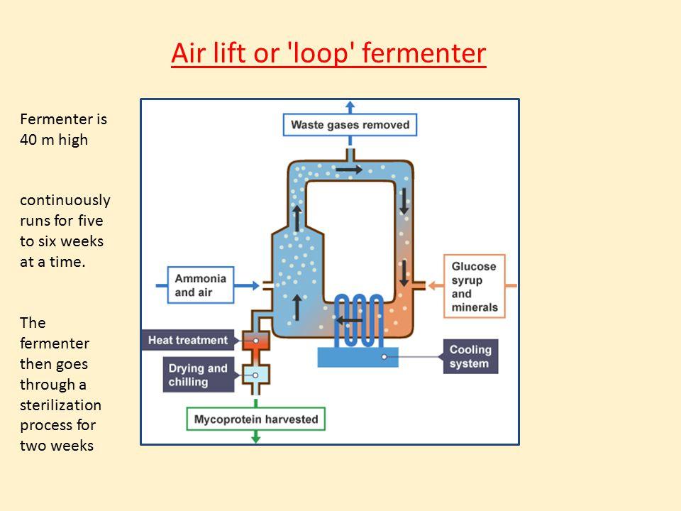 Air lift or loop fermenter