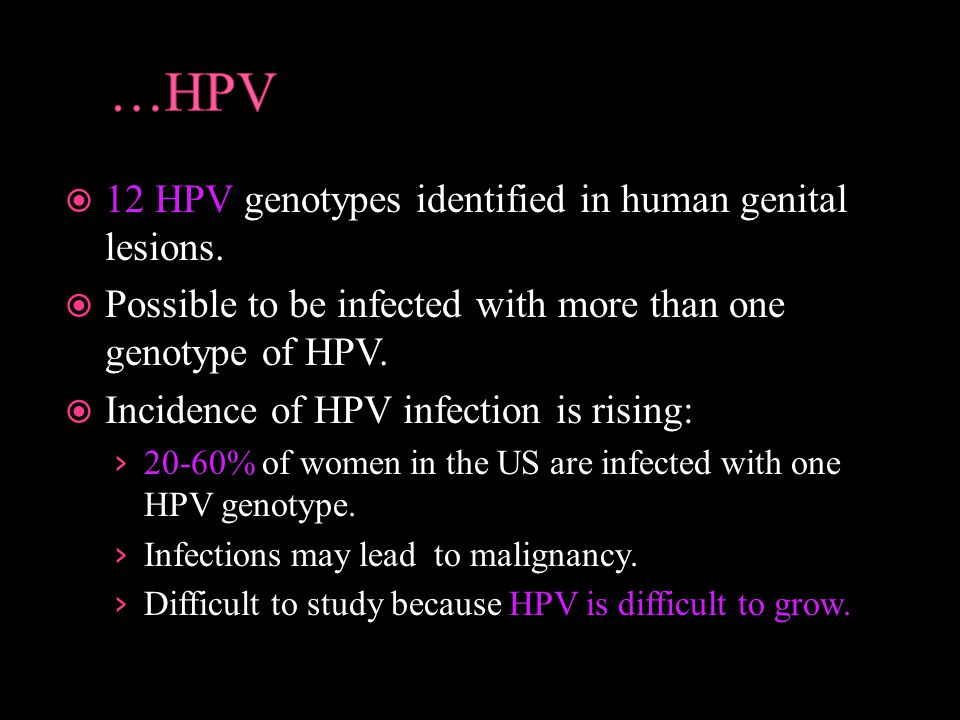…HPV 12 HPV genotypes identified in human genital lesions.