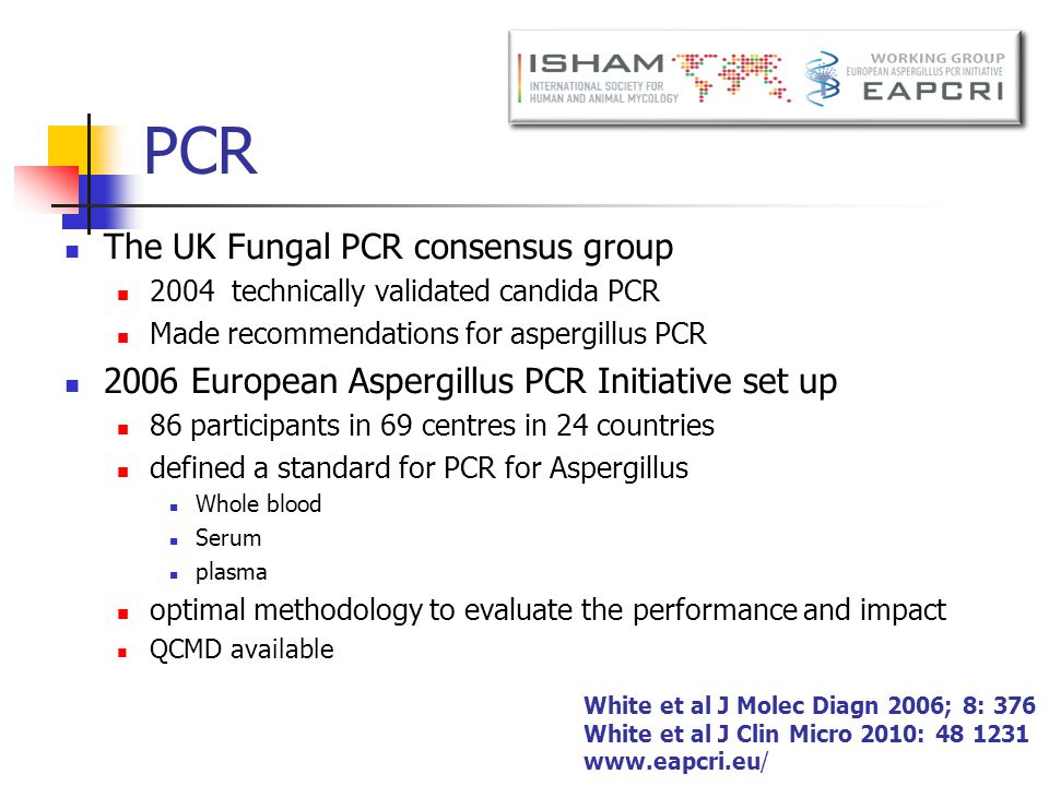 PCR The UK Fungal PCR consensus group