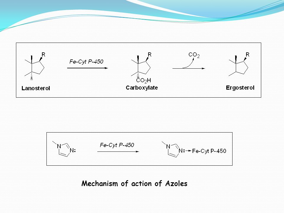 Mechanism of action of Azoles