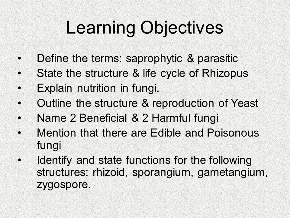 Learning Objectives Define the terms: saprophytic & parasitic