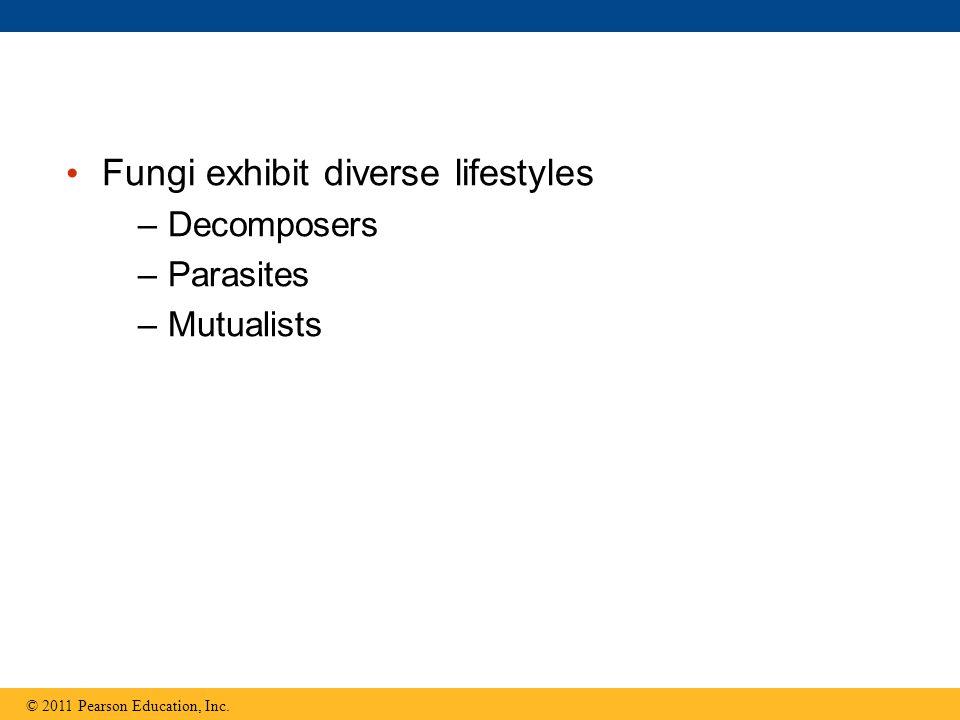 Fungi exhibit diverse lifestyles