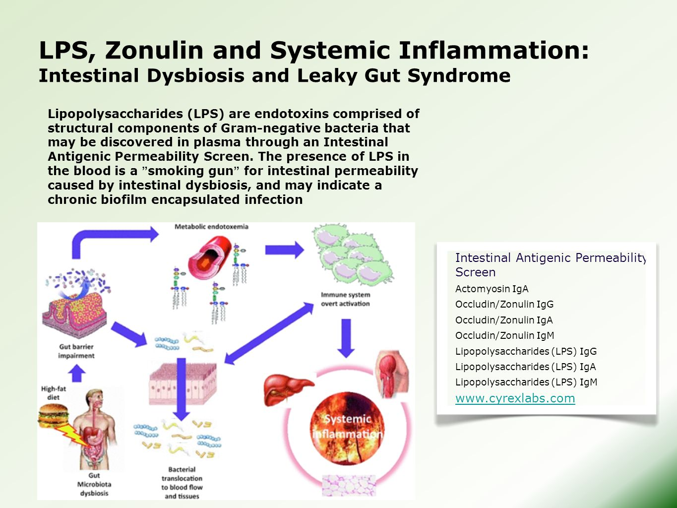 LPS, Zonulin and Systemic Inflammation: Intestinal Dysbiosis and Leaky Gut Syndrome