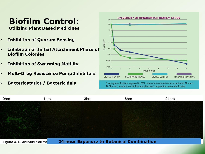 Biofilm Control: Utilizing Plant Based Medicines