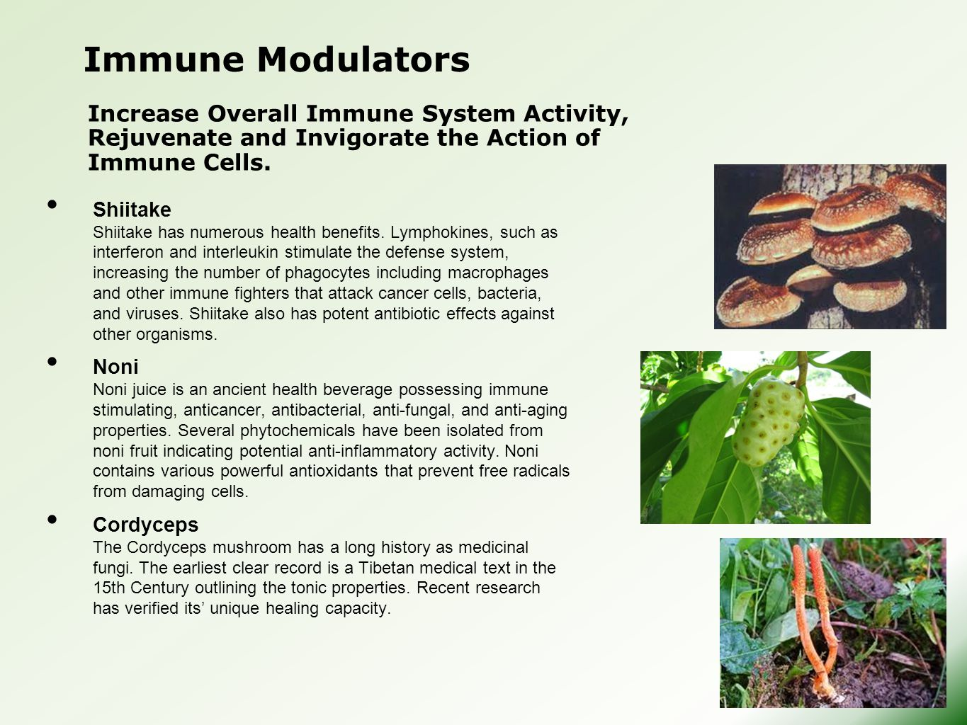 Immune Modulators Increase Overall Immune System Activity, Rejuvenate and Invigorate the Action of Immune Cells.