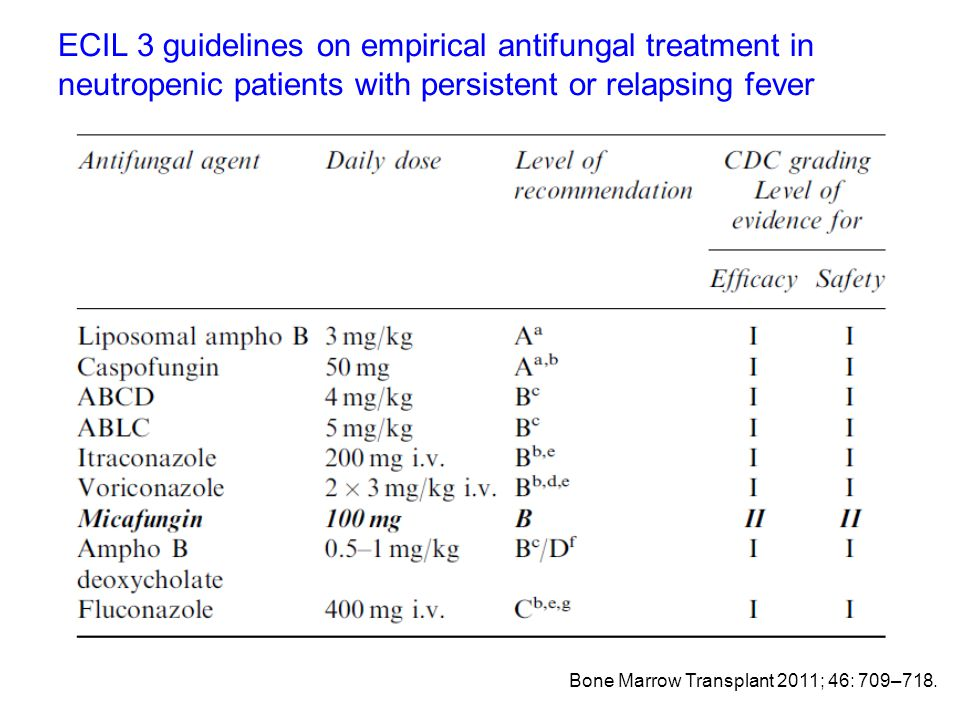 ECIL 3 guidelines on empirical antifungal treatment in neutropenic patients with persistent or relapsing fever